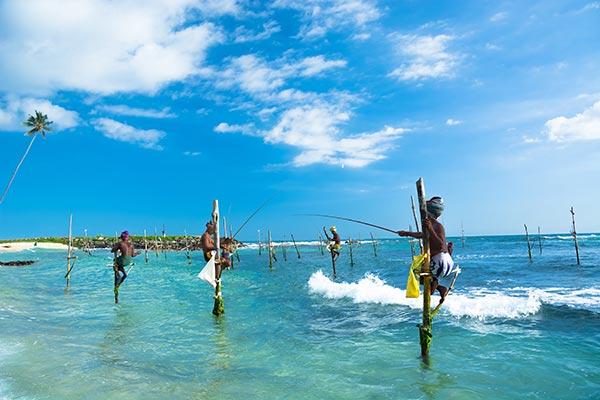 Sri Lanka 2019 Rundreise Ab 1618 Ruf Jugendreisen